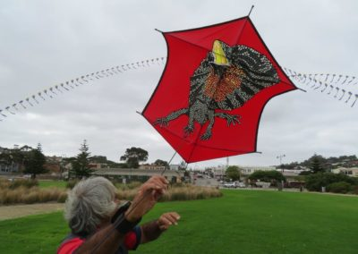 Sunsmart Albany Kite Fiesta 2019b - Photo by Basil Schur